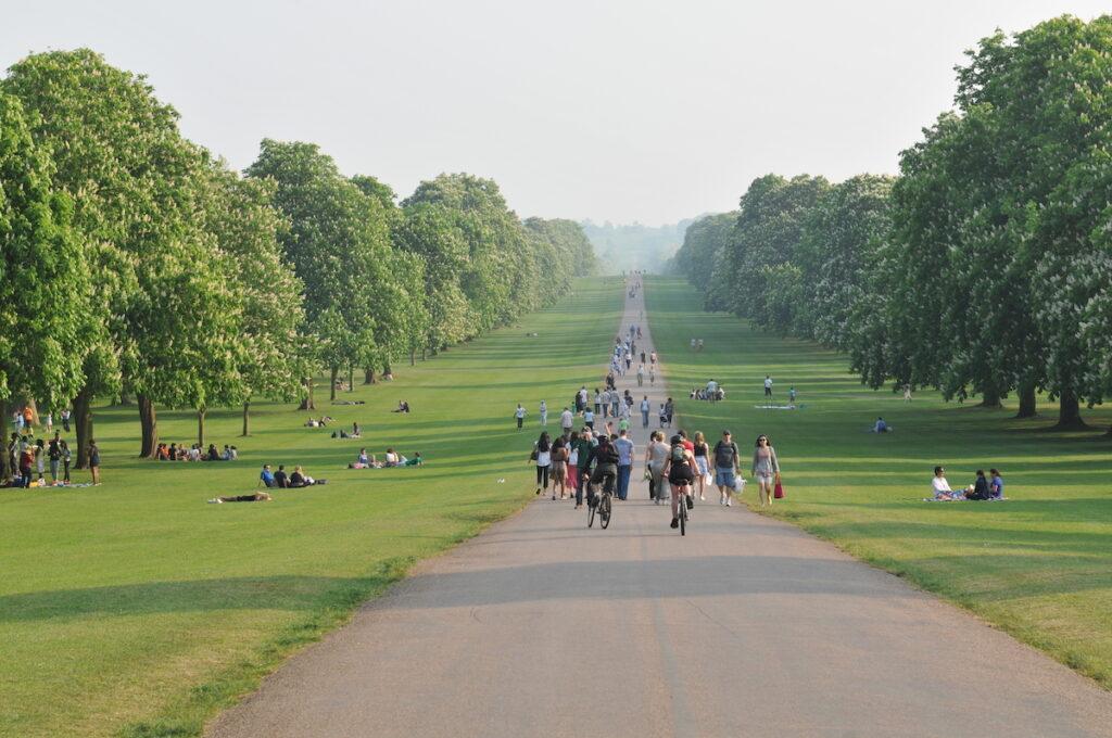 Windsor Great Park in England.