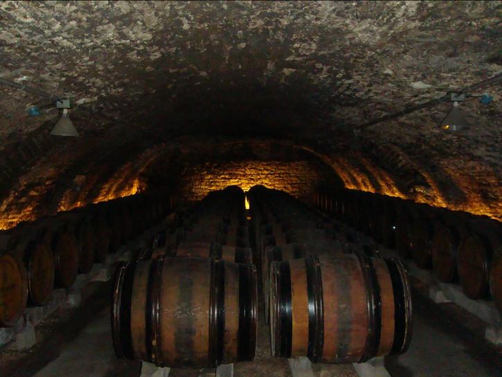 wine cellar with kegs