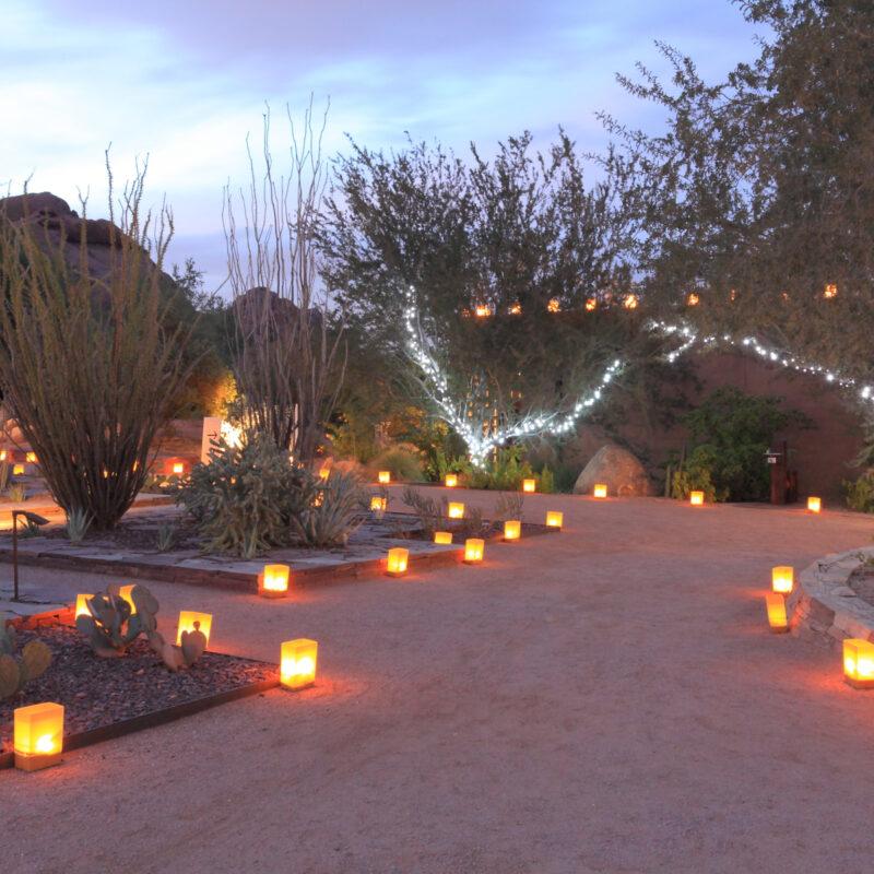 Winter Street Fair in Tucson, Arizona.