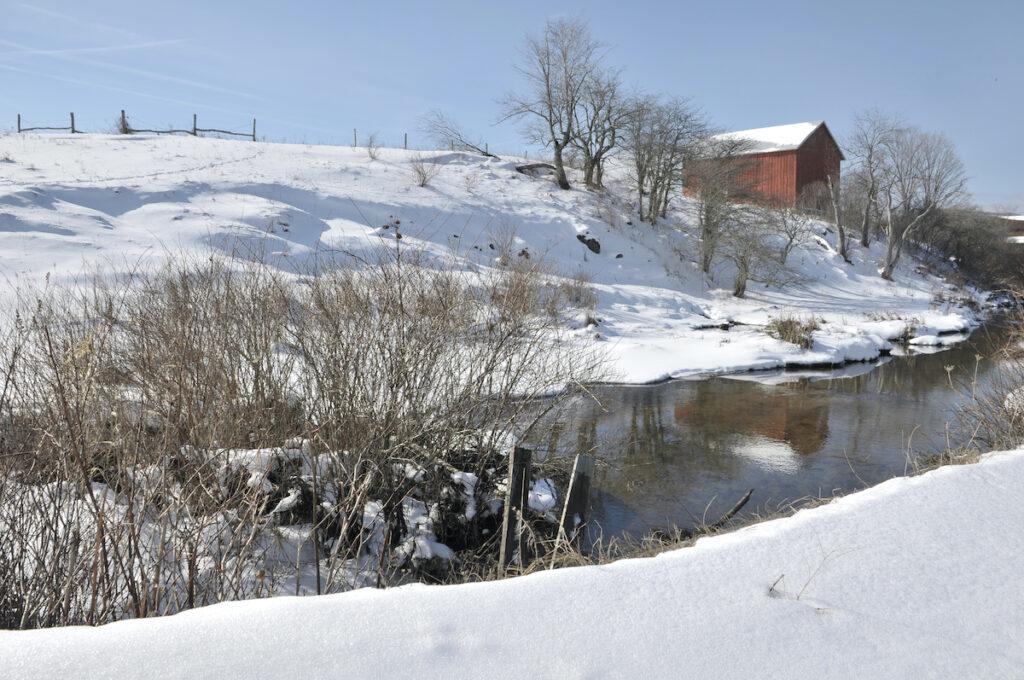 Winter time in Canaan Valley, West Virginia.