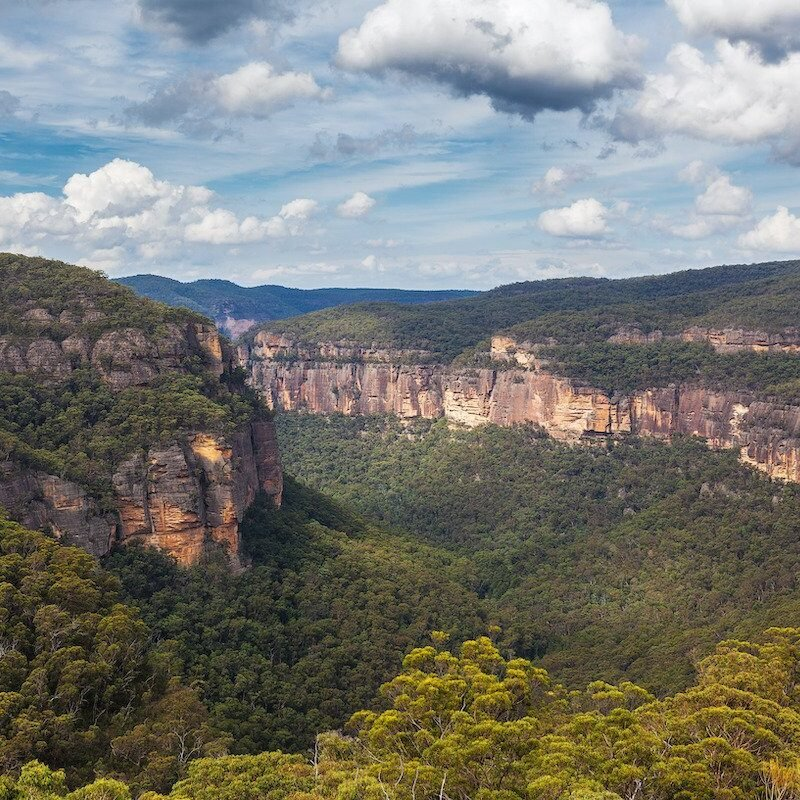 Wollemi National Park in Australia.