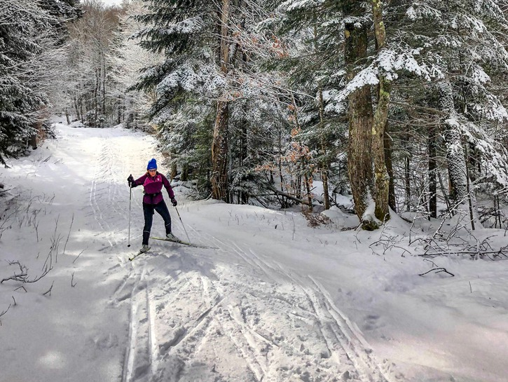 Woman cross-country skiing in the woods