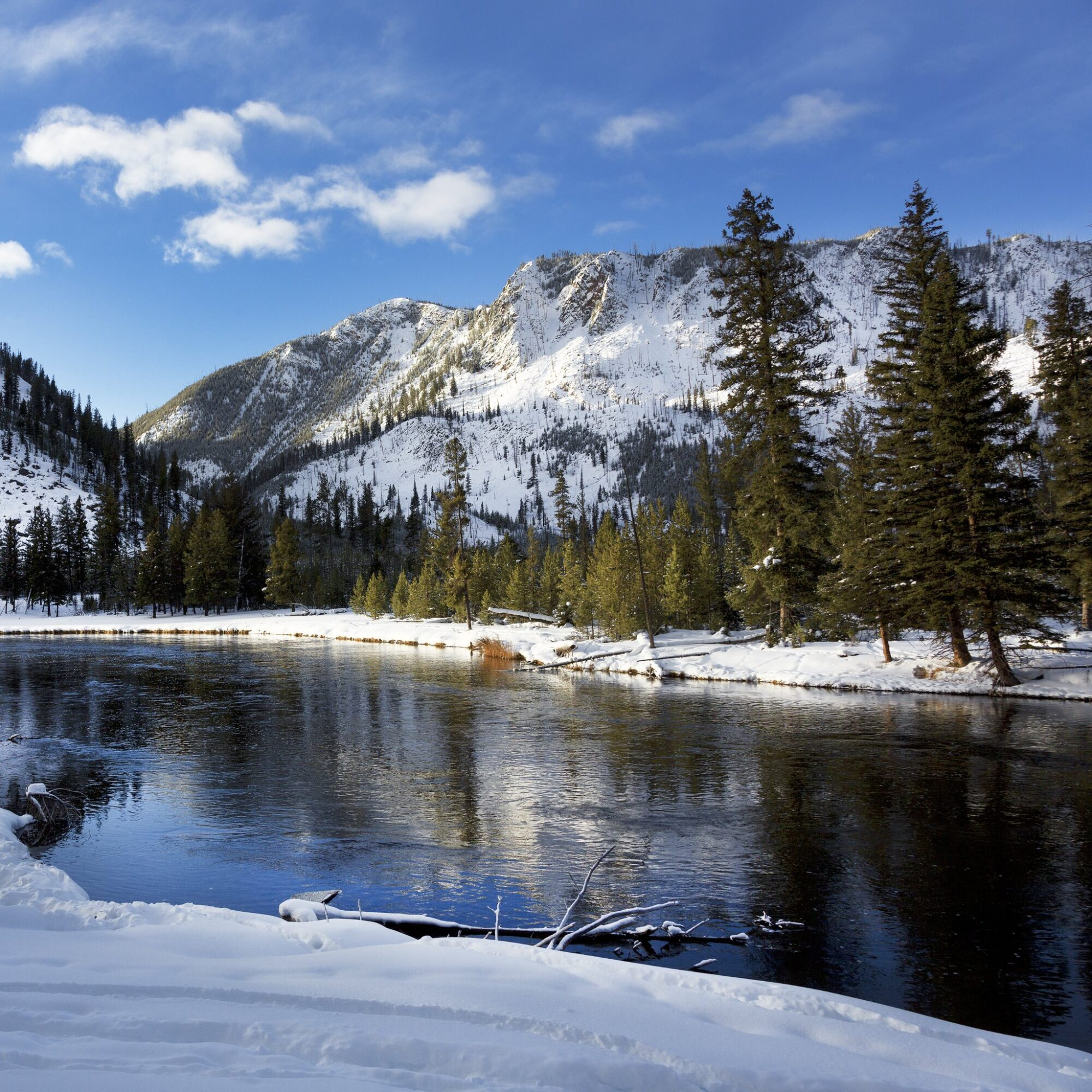 Yellowstone National Park during winter time.