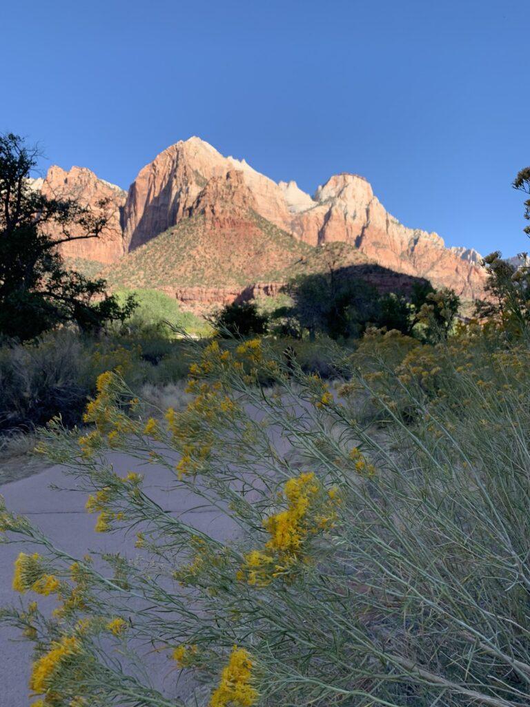 Zion National park in Springdale, Utah.