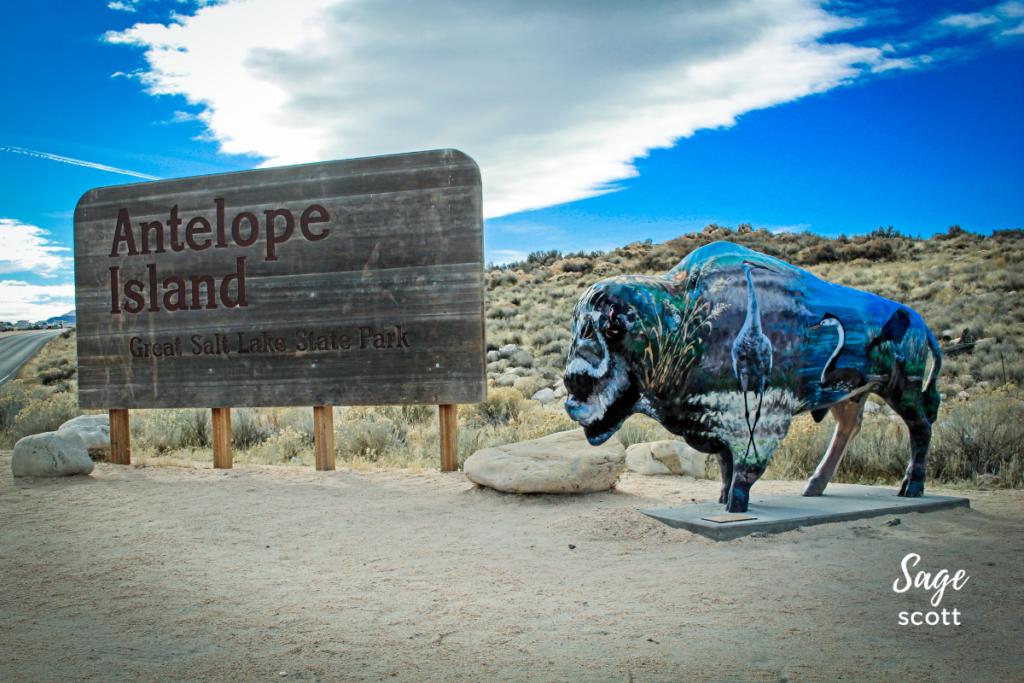 Antelope Island in Utah.