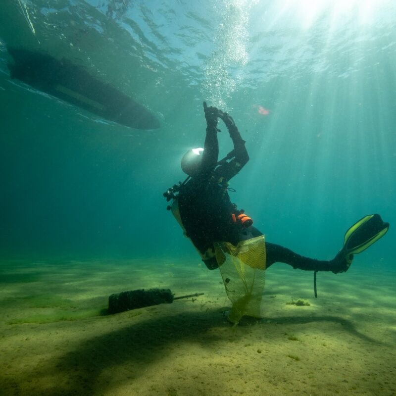 A diver in Lake Tahoe.