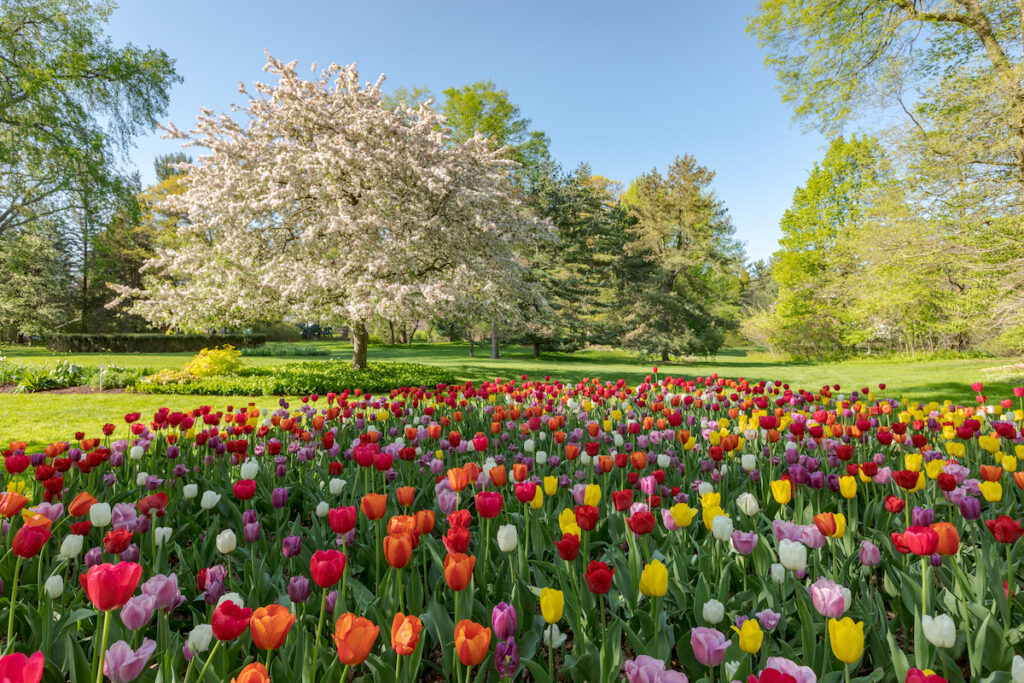 Dow Gardens in Midland, Michigan.