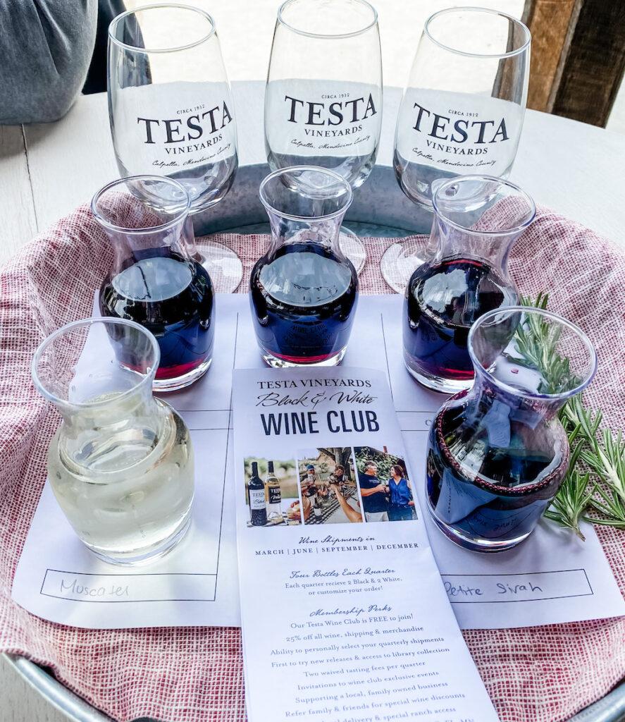 Wine club flyer at Testa Vineyards.