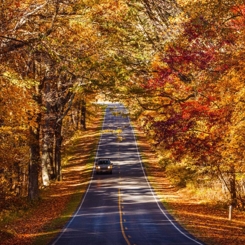 Skyline Drive in autumn, Shenandoah National Park.