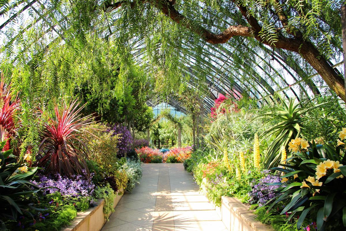 Longwood Gardens Orangery Green House