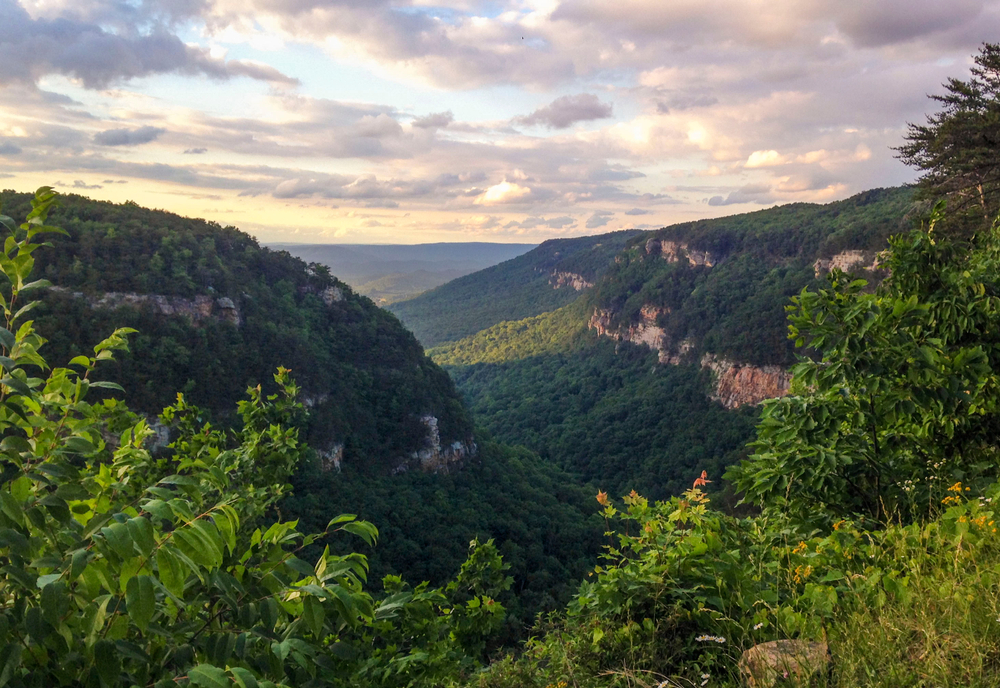 Cloudland Canyon State Park in Northern Georgia