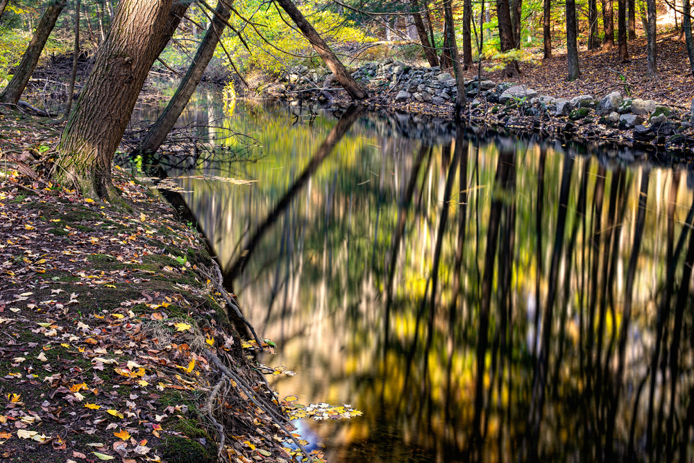 Mianus River Gorge in fall.
