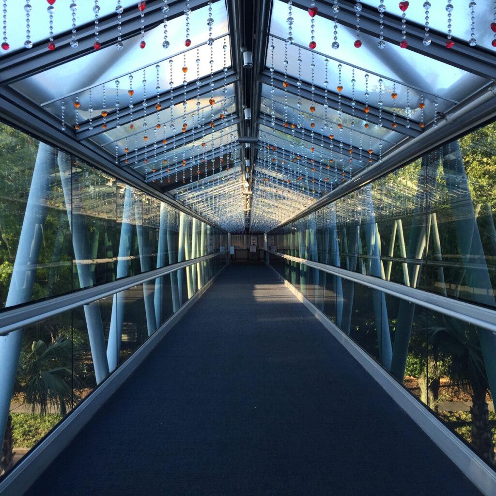 The Orlando Science Center's glass pedestrian bridge.