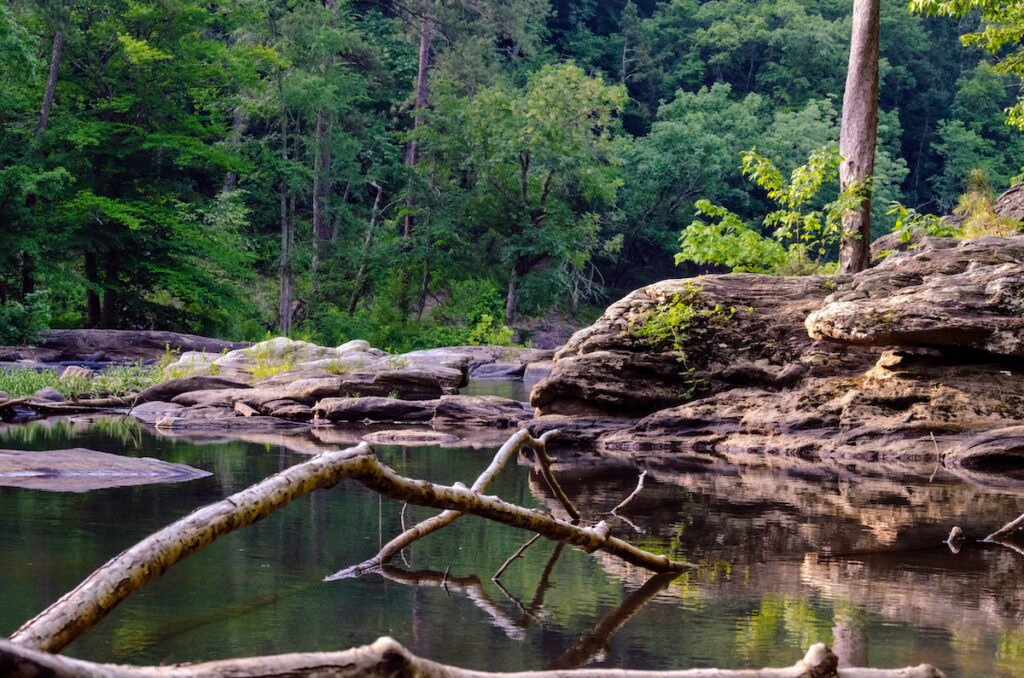 Sweetwater Creek State Park.