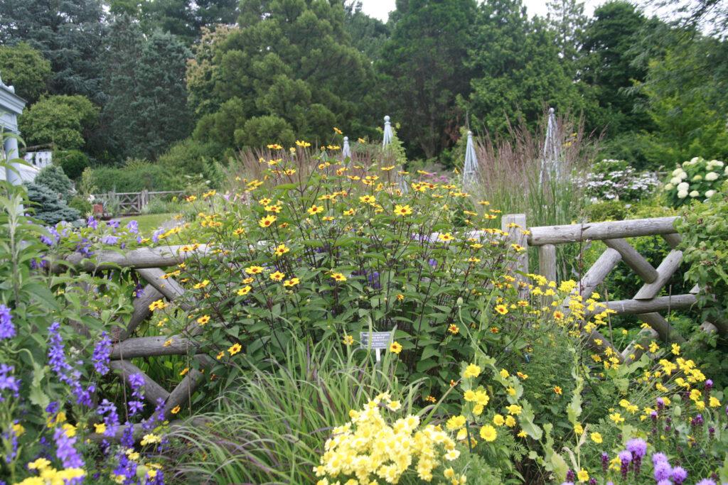 Wave Hill Garden.