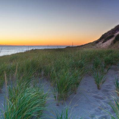 Head of the Meadow Beach.
