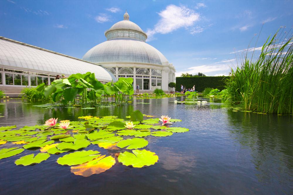 Victorian greenhouse and water Lilly Pond at conservatory in New York Botanical Garden in the Bronx, NYC
