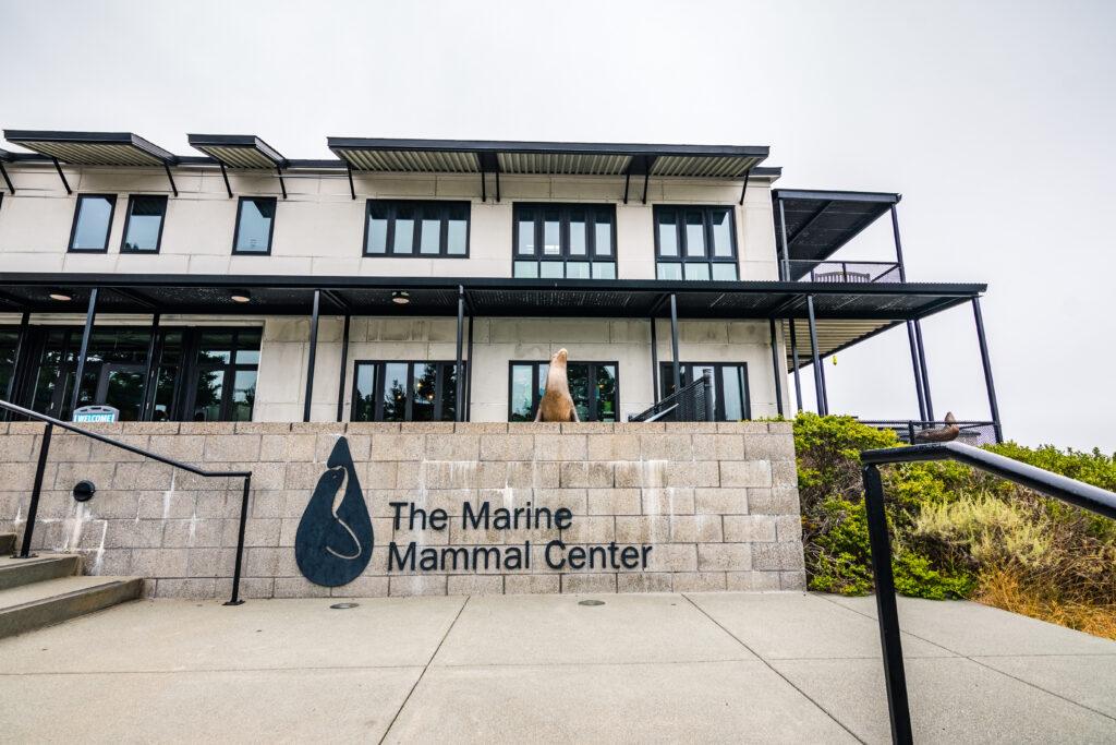 Pacific Marine Mammal Center.
