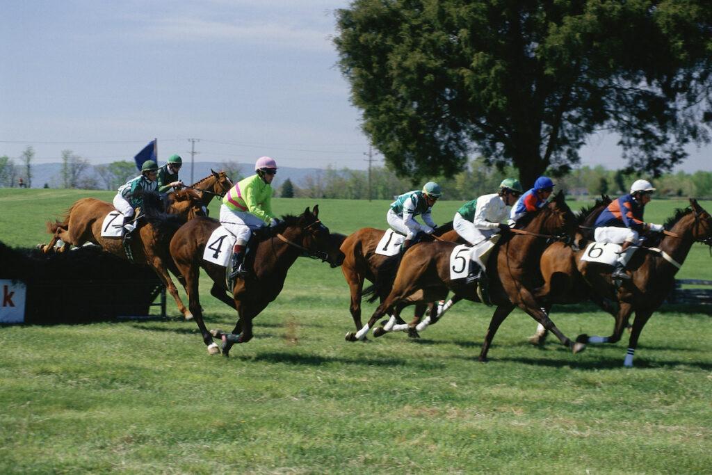 Horse racing in Middleburg, VA.