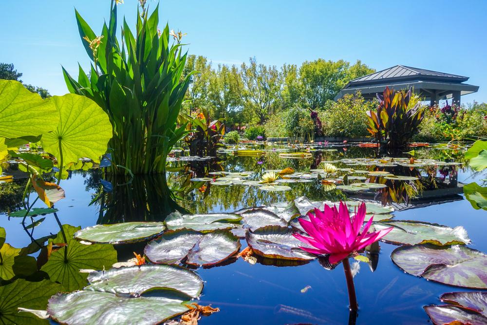 Denver Botanical Gardens in Colorado