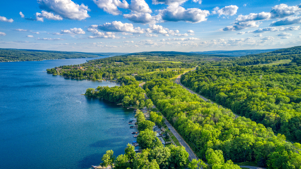 Keuka Lake surrounded by green trees during the summertime.