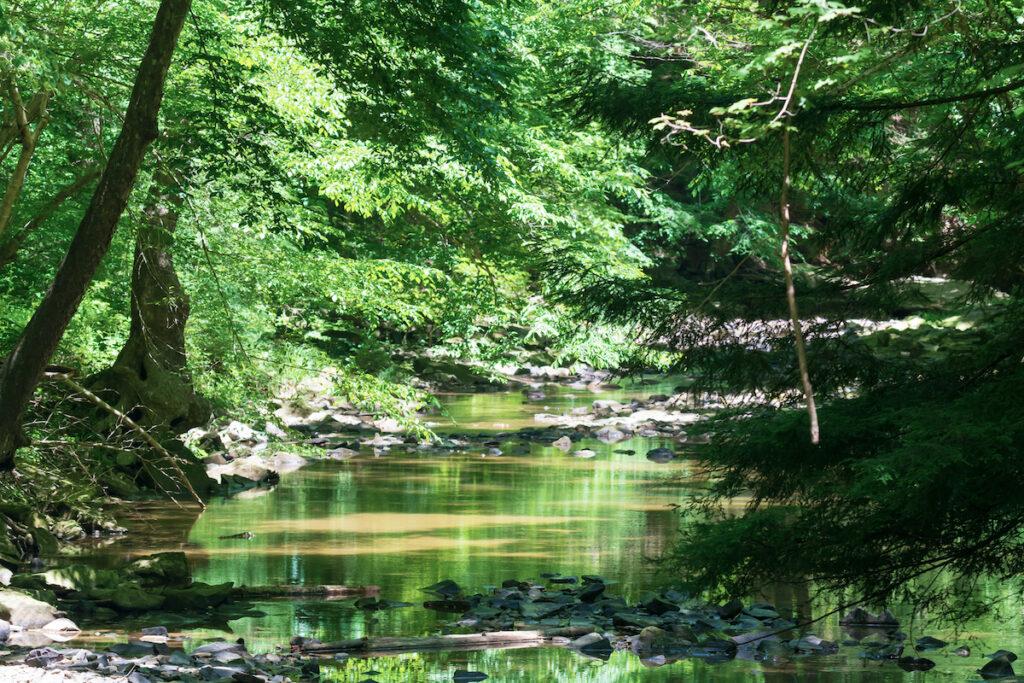 Shawnee State Park, Friendship, Ohio.
