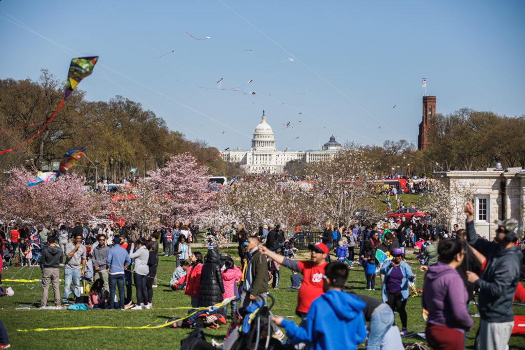 National Cherry Blossom Festival Petalpalooza.