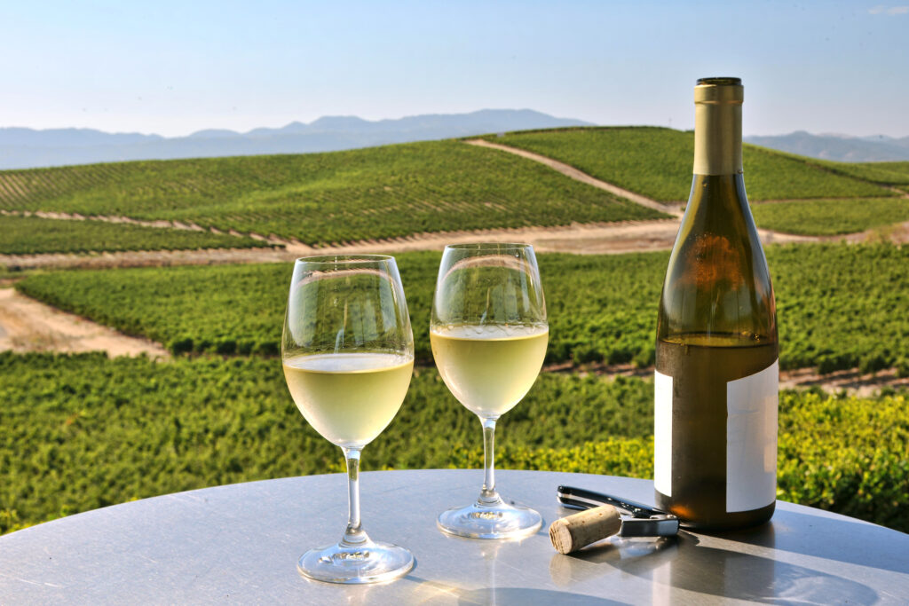 Two glasses of white wine overlooking napa valley.