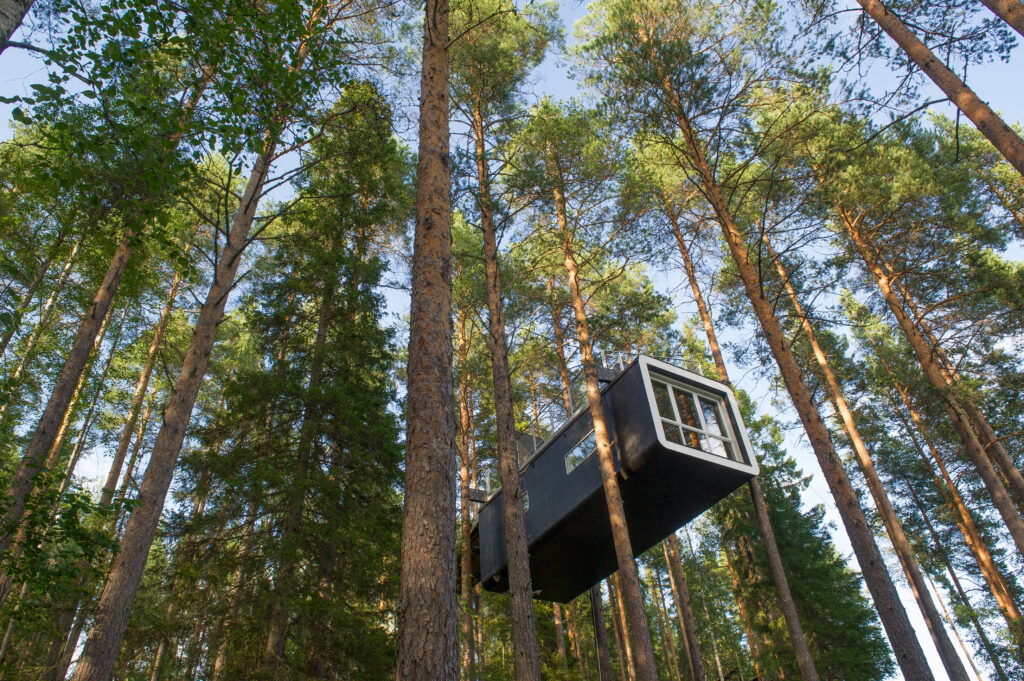 The Cabin a modern treehouse in the woods , Harads, Sweden.