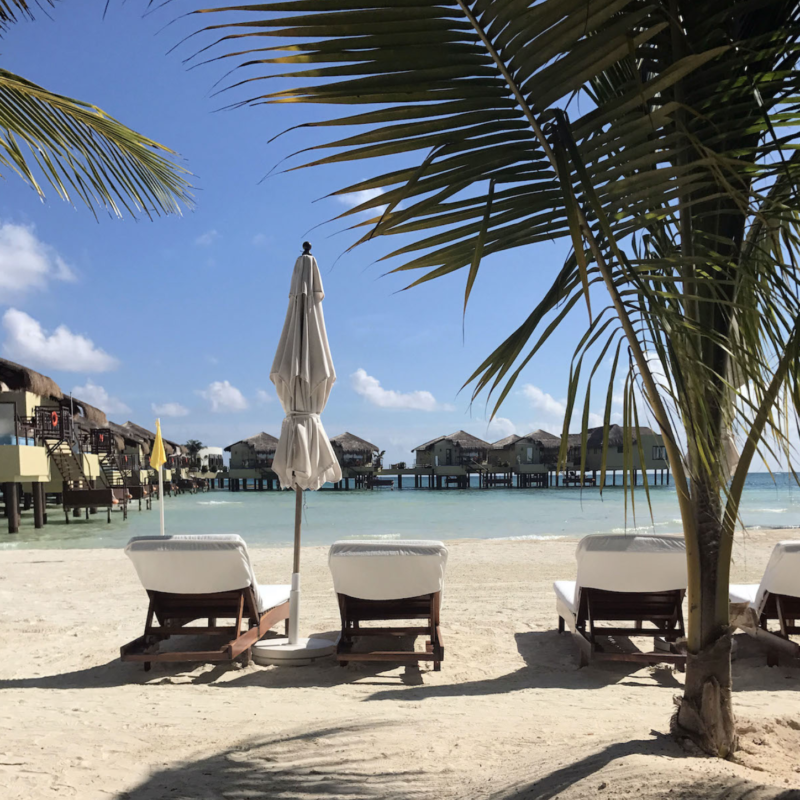 Beach chairs at an all-inclusive resort.