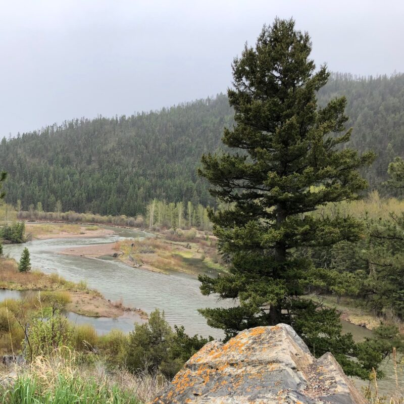Blackfoot River in Montana.