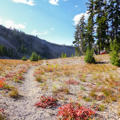 Alpine hiking trail in the Pacific Northwest