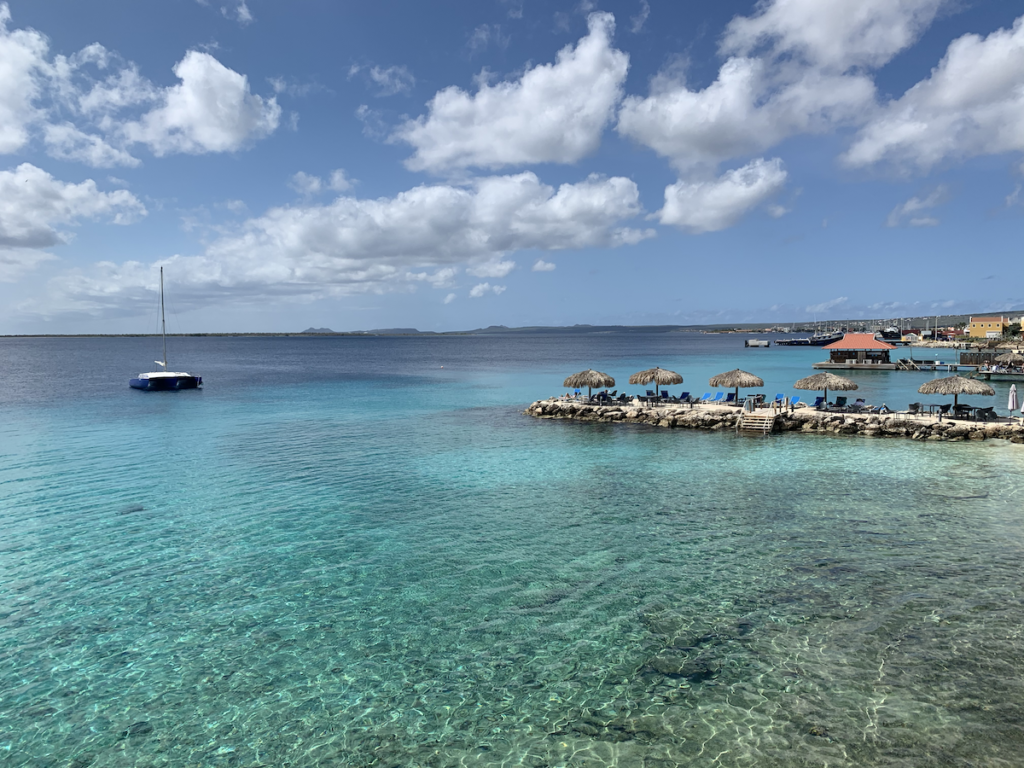 Bonaire's warm and tranquil waters.