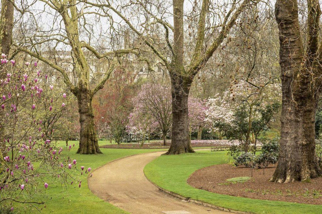 Buckingham Palace walking path.