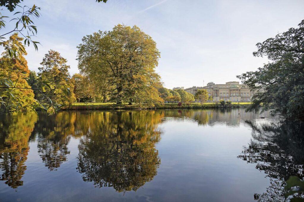 The lake at Buckingham Palace.