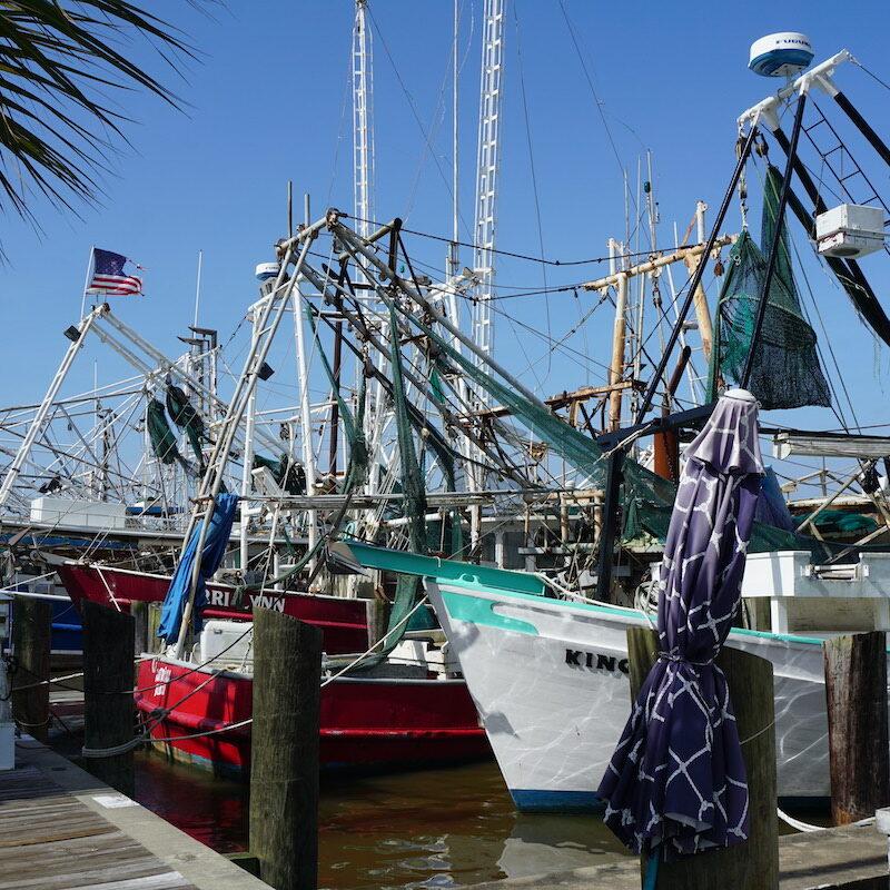 Shrimp boats in Biloxi.