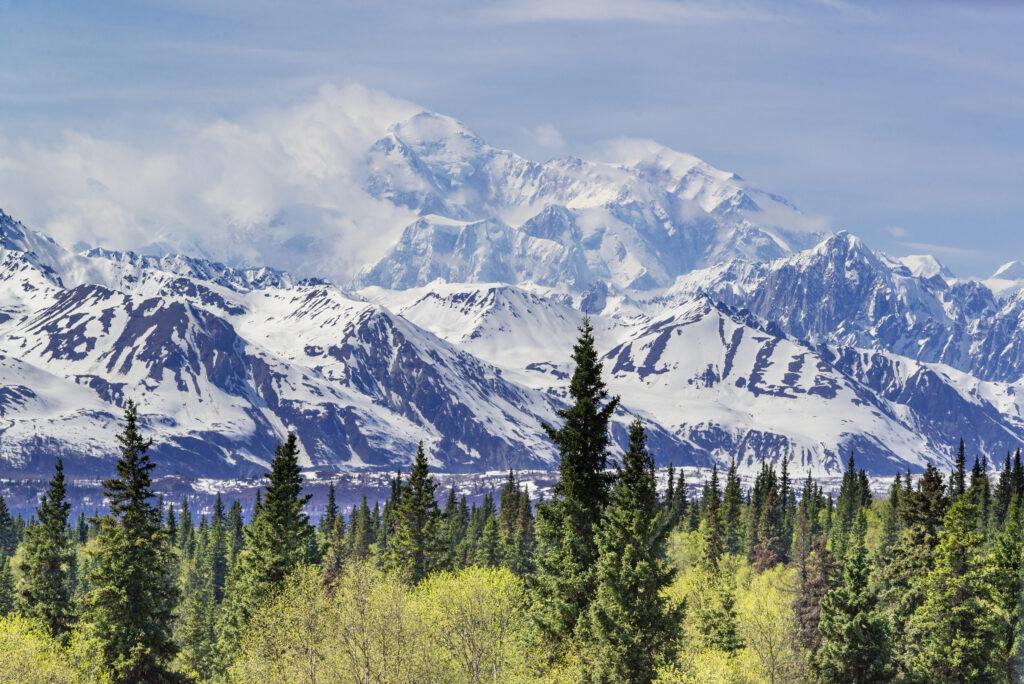 Denali National Park in Anchorage, AK