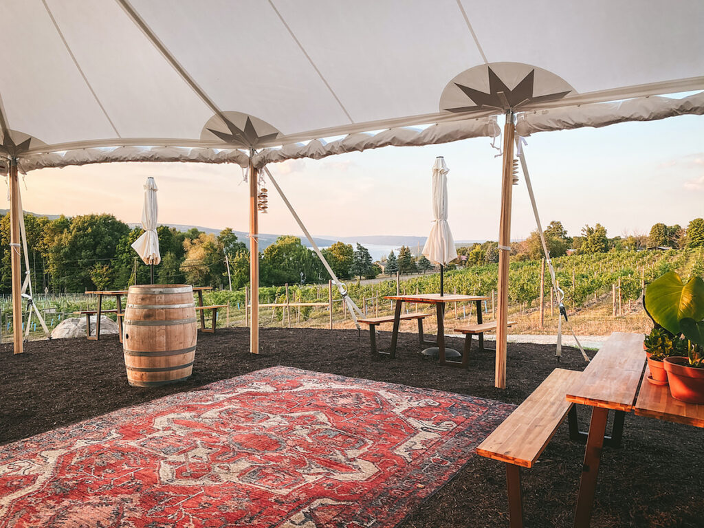 Living Roots Wine & Co. has an urban tasting room in downtown Rochester, New York.