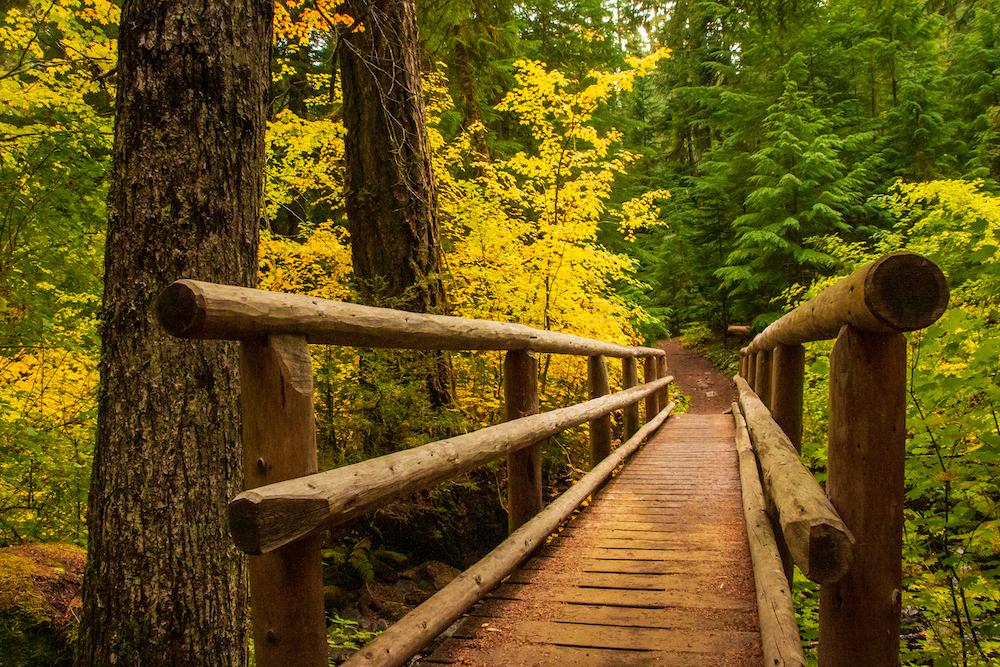 Hiker bridge across a creek in the Cascades Mountains