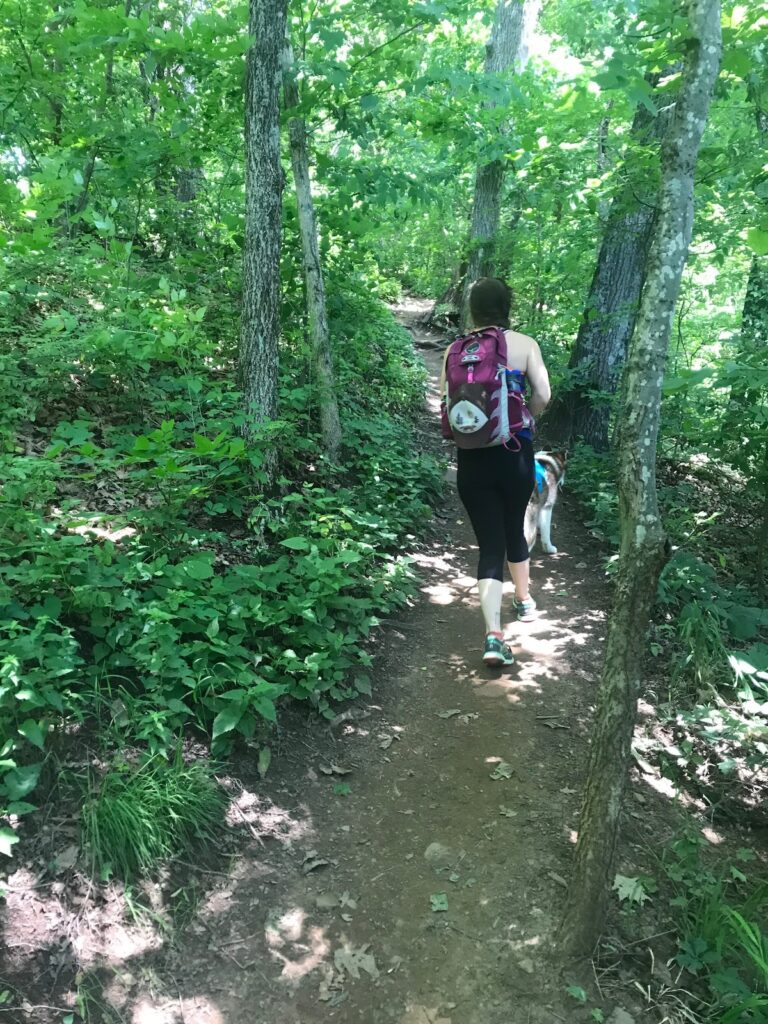Florence is an outdoor lover's and birder's paradise, boasting of the North Alabama Birding Trail and plenty of hiking.