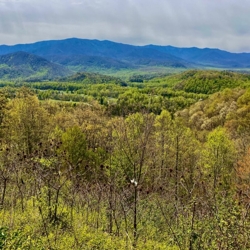 A scenic view in Tennessee.