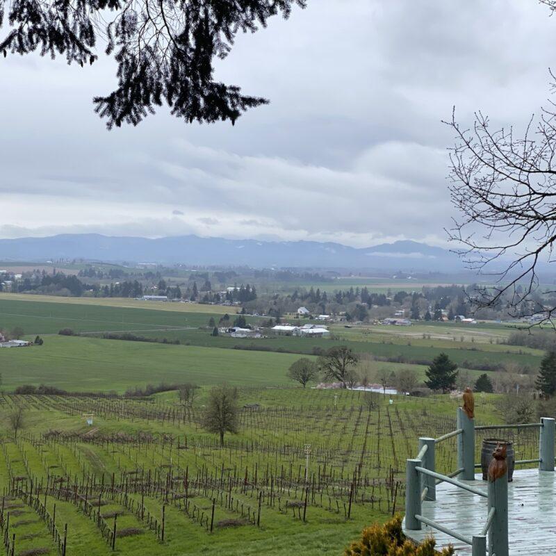 Keeler Estate Vineyards.