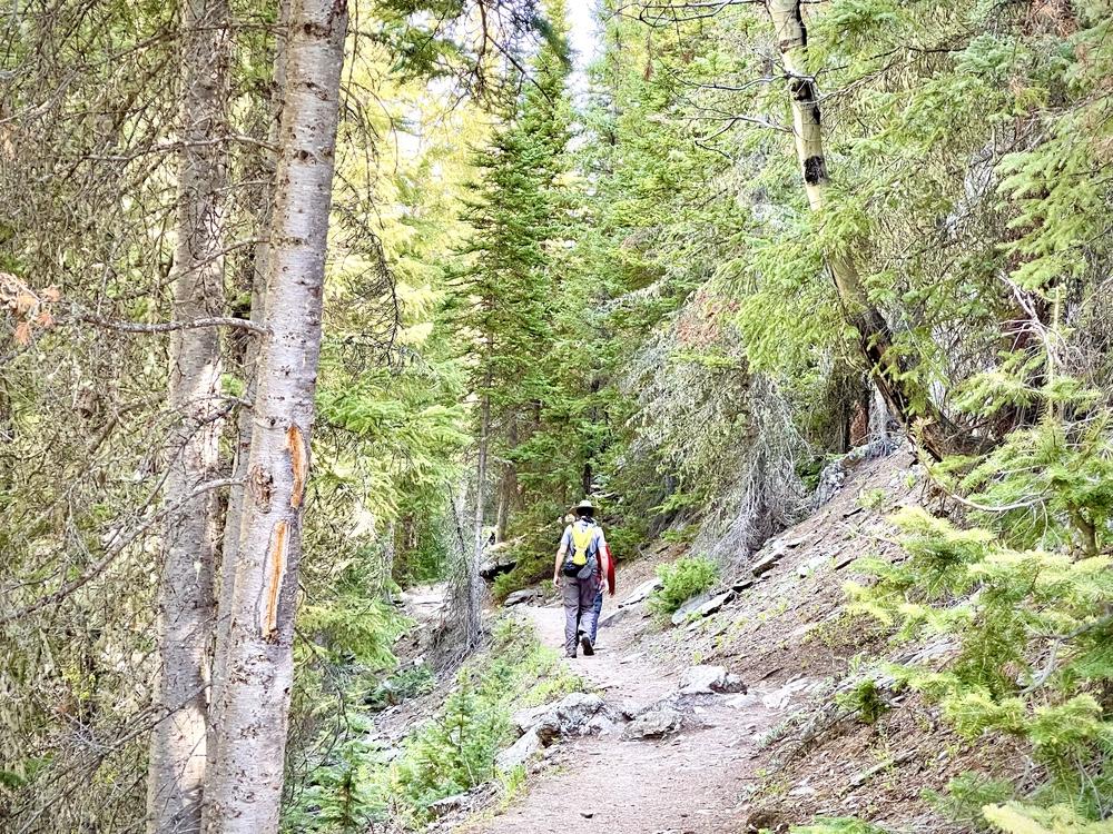 Narrow Trail Leading Up To Lulu City