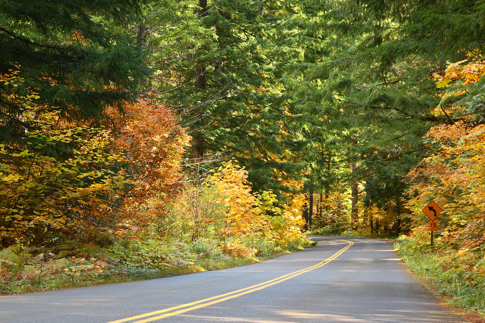 Old McKenzie Highway