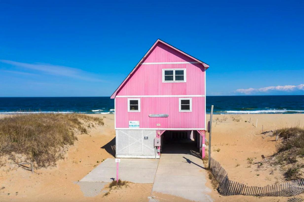 A Carolina Conch — Kitty Hawk, NC