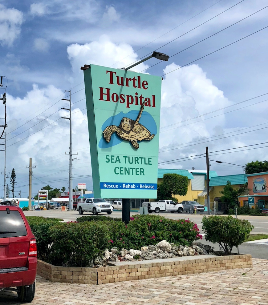 A sign for the Turtle Hospital.