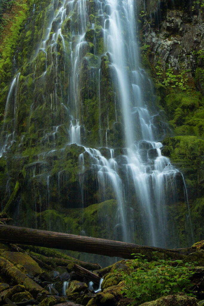 Proxy Falls in Oregon.