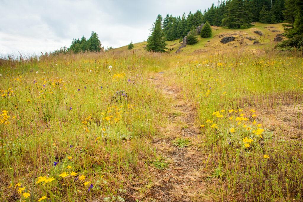 Horse Rock Ridge.