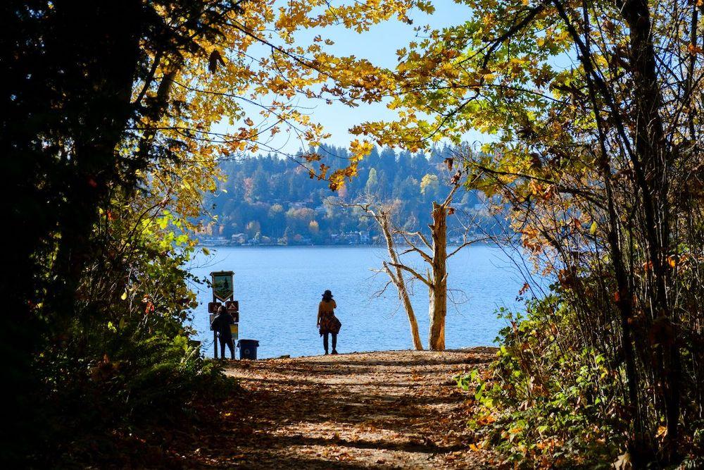 Woman looking at Lake Washington while hiking in Saint Edward State Park