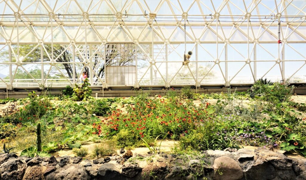 Six of the Seven Biomes at Biosphere 2 in Oracle, Arizona.